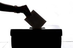 estland valg stemmer online halvdelen 50 procent / Newz.dk