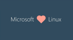 microsoft windows 10 linux kerne kernel indbygget subsystem wsl2 / Newz.dk