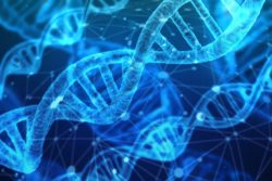 nationalt genom center kobler cpr numre sammen datasikkerhed / Newz.dk