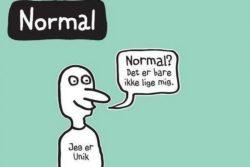 Normal hacket Instagram / Newz.dk