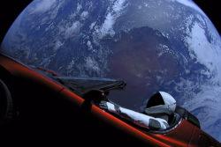 spacex starman-dukke kommer tæt på mars for første gang / newz.dk