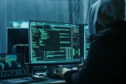hacking gab donald trump ddosecrets data parler / newz.dk