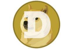 dogecoin doge 1 spacex elon musk månen satellit / newz.dk